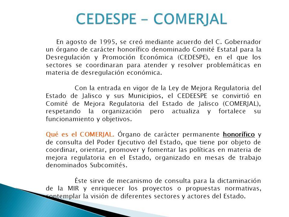En agosto de 1995, se creó mediante acuerdo del C.