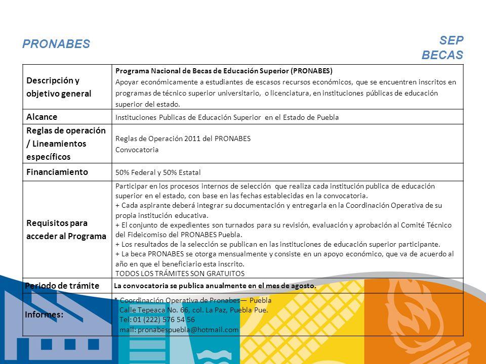 PRONABES Descripción y objetivo general Programa Nacional de Becas de Educación Superior (PRONABES) Apoyar económicamente a estudiantes de escasos rec