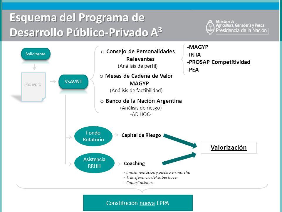 Esquema del Programa de Desarrollo Público-Privado A 3 o Consejo de Personalidades Relevantes (Análisis de perfil) o Mesas de Cadena de Valor MAGYP (A