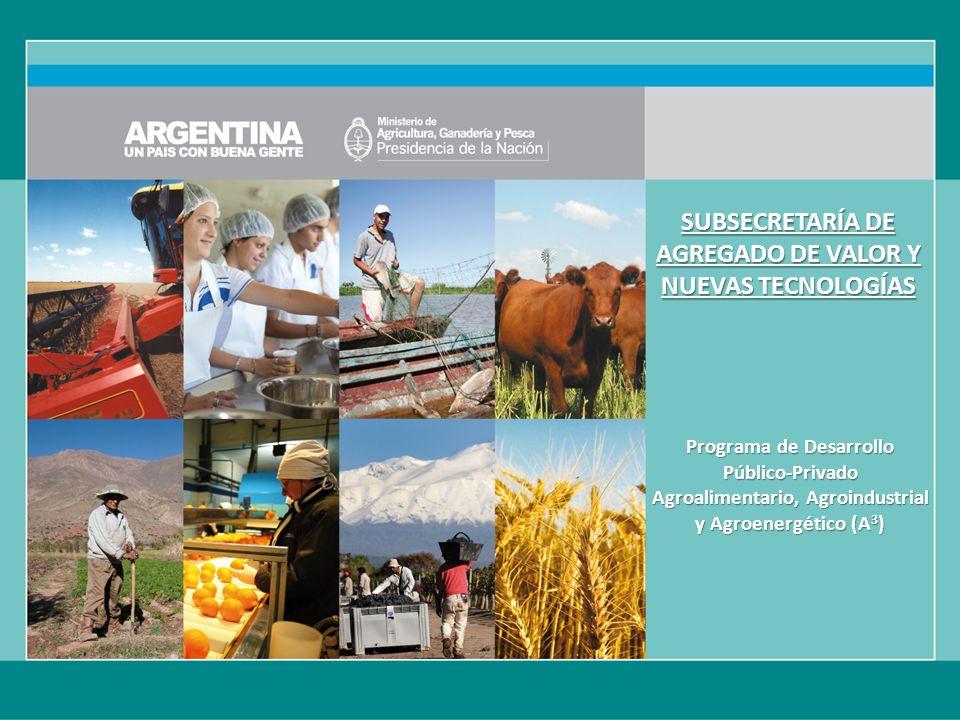 SUBSECRETARÍA DE AGREGADO DE VALOR Y NUEVAS TECNOLOGÍAS Programa de Desarrollo Público-Privado Agroalimentario, Agroindustrial y Agroenergético (A 3 )