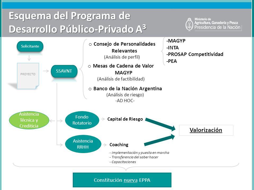 o Consejo de Personalidades Relevantes (Análisis de perfil) o Mesas de Cadena de Valor MAGYP (Análisis de factibilidad) Constitución nueva EPPA PROYEC