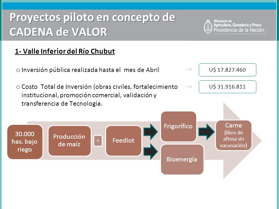 30.000 has. bajo riego Producción de maíz FeedlotFrigorífico Carne ( libre de aftosa sin vacunación ) Bioenergía + Proyectos piloto en concepto de CAD