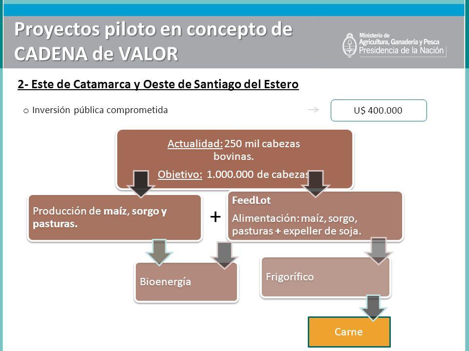 Proyectos piloto en concepto de CADENA de VALOR 2- Este de Catamarca y Oeste de Santiago del Estero Actualidad: 250 mil cabezas bovinas. Objetivo: 1.0
