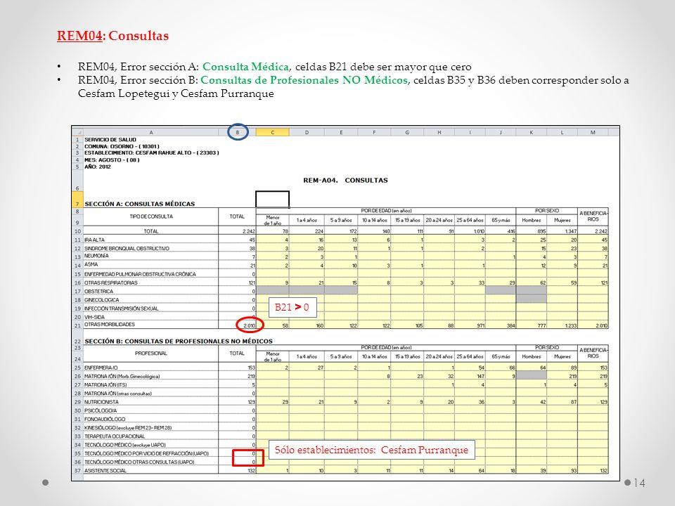 REM04: Consultas REM04, Error sección A: Consulta Médica, celdas B21 debe ser mayor que cero REM04, Error sección B: Consultas de Profesionales NO Méd