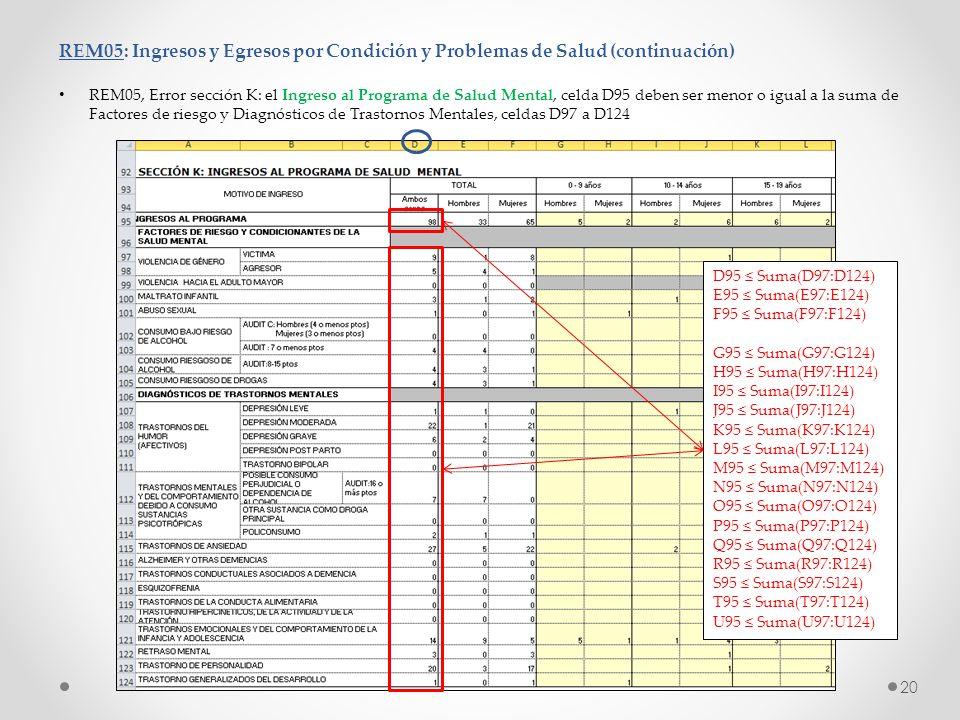 REM05: Ingresos y Egresos por Condición y Problemas de Salud (continuación) REM05, Error sección K: el Ingreso al Programa de Salud Mental, celda D95