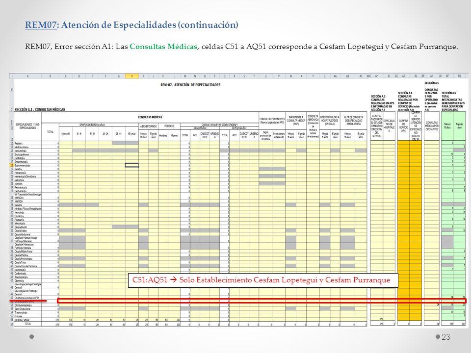 REM07: Atención de Especialidades (continuación) REM07, Error sección A1: Las Consultas Médicas, celdas C51 a AQ51 corresponde a Cesfam Lopetegui y Ce