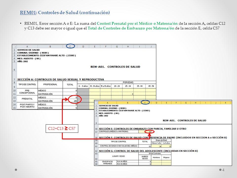 REM01: Controles de Salud (continuación) REM01, Error sección A o E: La suma del Control Prenatal por el Médico o Matrona/ón de la sección A, celdas C