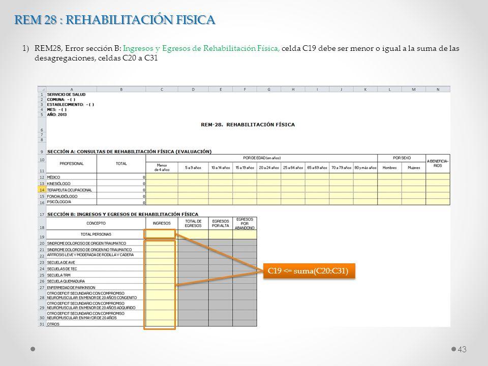 43 C19 <= suma(C20:C31) REM 28 : REHABILITACIÓN FISICA 1)REM28, Error sección B: Ingresos y Egresos de Rehabilitación Física, celda C19 debe ser menor