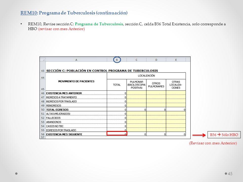 REM10: Programa de Tuberculosis (continuación) REM10, Revise sección C: Programa de Tuberculosis, sección C, celda B56 Total Existencia, solo correspo