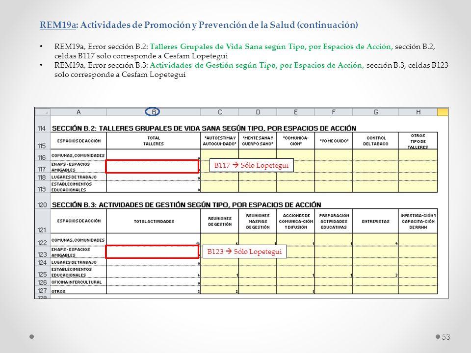 REM19a: Actividades de Promoción y Prevención de la Salud (continuación) REM19a, Error sección B.2: Talleres Grupales de Vida Sana según Tipo, por Esp