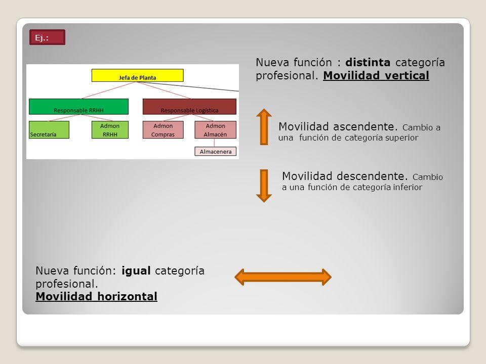 Ej.: Nueva función : distinta categoría profesional. Movilidad vertical Movilidad ascendente. Cambio a una función de categoría superior Movilidad des
