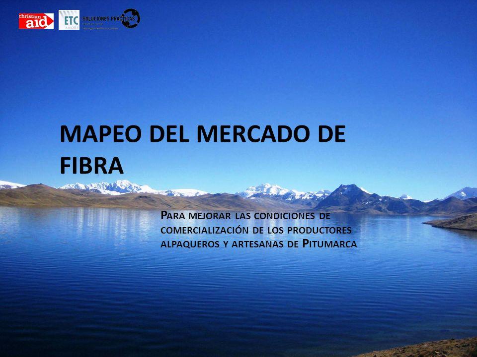 MAPEO DEL MERCADO DE FIBRA P ARA MEJORAR LAS CONDICIONES DE COMERCIALIZACIÓN DE LOS PRODUCTORES ALPAQUEROS Y ARTESANAS DE P ITUMARCA