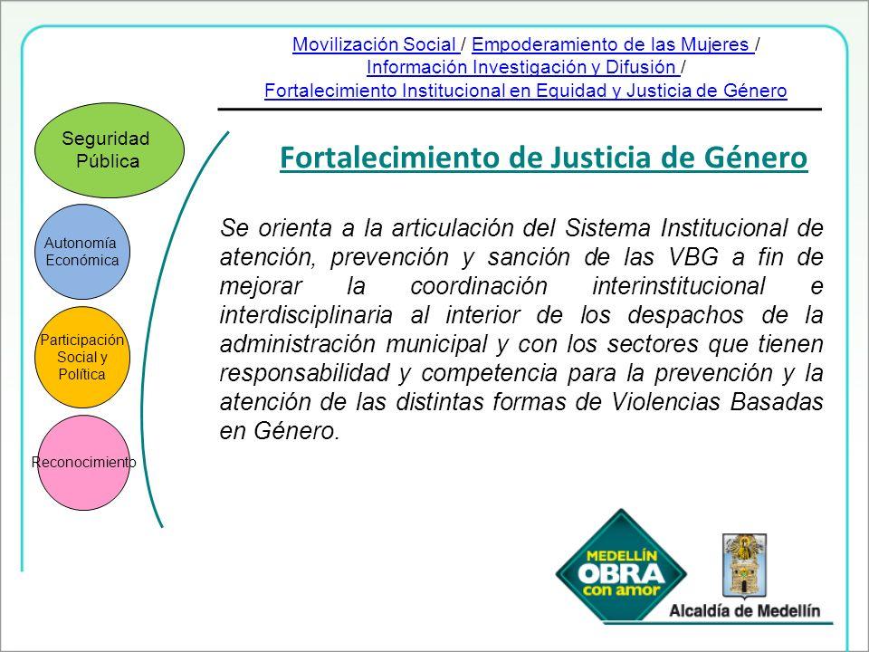 Fortalecimiento de Justicia de Género Autonomía Económica Participación Social y Política Reconocimiento Seguridad Pública Se orienta a la articulació