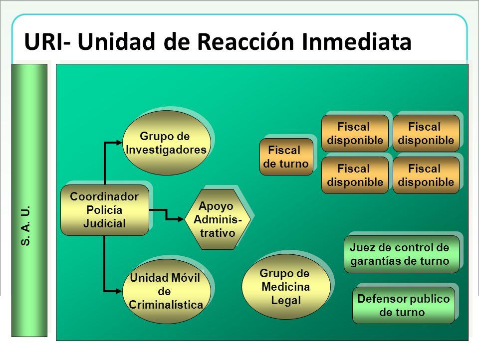 Plan de Acción Fortalecimiento Política Pública –Construcción del Plan de Infancia y Adolescencia de la ciudad de Medellín –Observatorio de infancia y adolescencia – Seguimiento a las políticas públicas.