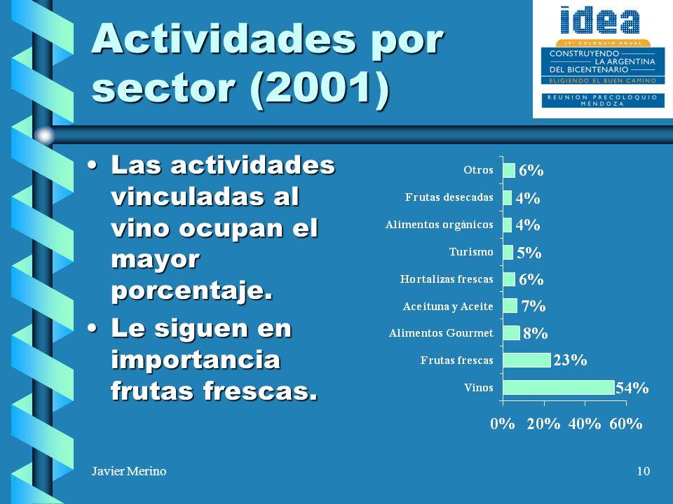 Javier Merino10 Actividades por sector (2001) Las actividades vinculadas al vino ocupan el mayor porcentaje.Las actividades vinculadas al vino ocupan el mayor porcentaje.