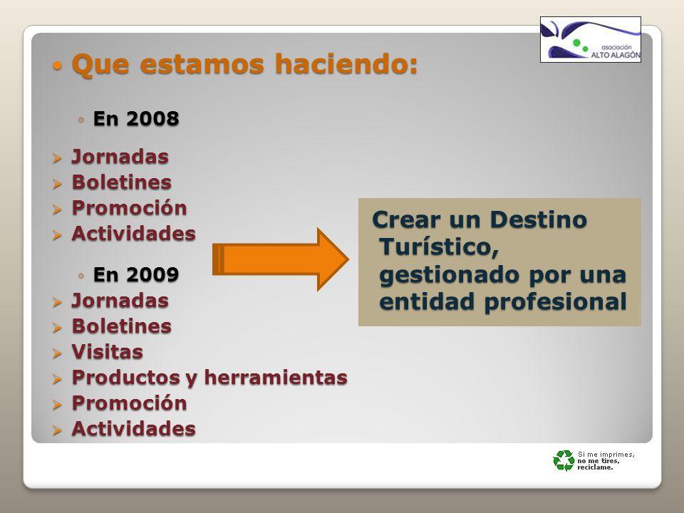Que estamos haciendo: Que estamos haciendo: En 2008En 2008 Jornadas Jornadas Boletines Boletines Promoción Promoción Actividades Actividades En 2009En