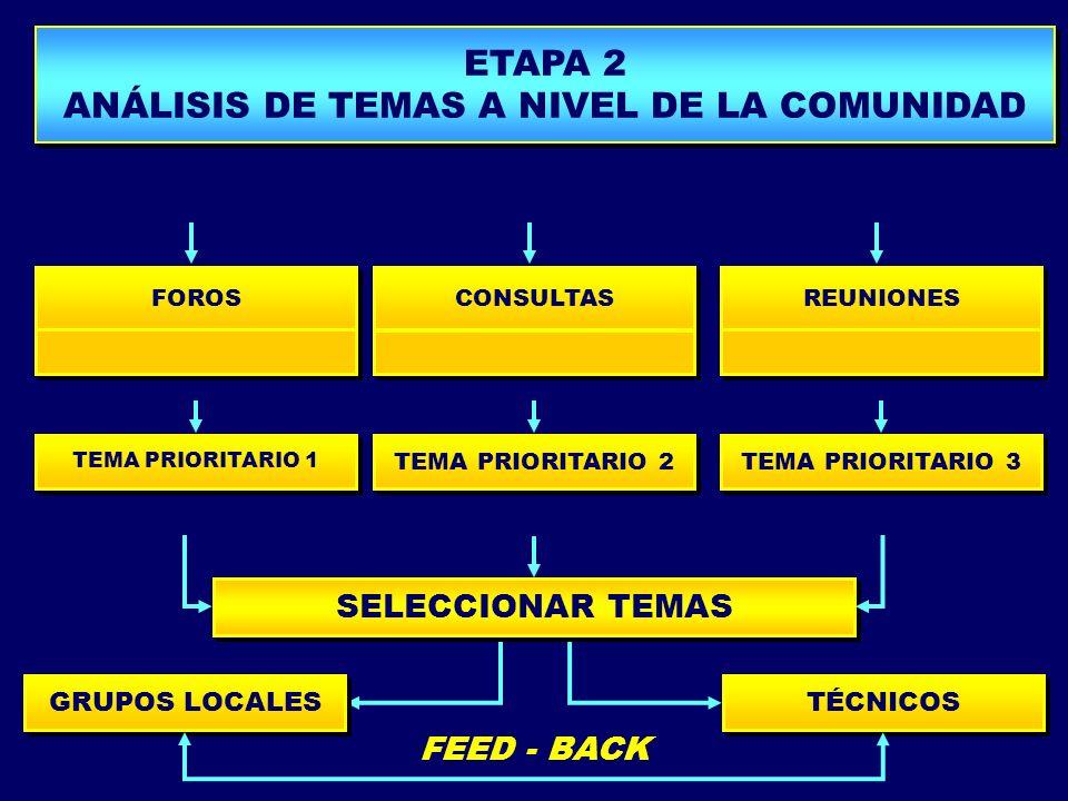 GRUPOS LOCALES TEMA PRIORITARIO 1 TEMA PRIORITARIO 2 TEMA PRIORITARIO 3 FOROS CONSULTAS REUNIONES PROPUESTA DE MODELO PLANIFICACIÓN TURÍSTICA ETAPA 2