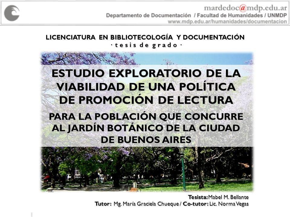 LICENCIATURA EN BIBLIOTECOLOGÍA Y DOCUMENTACIÓN · t e s i s d e g r a d o · Tesista: Mabel M. Bellante Tutor: Mg. María Graciela Chueque / Co-tutor: L