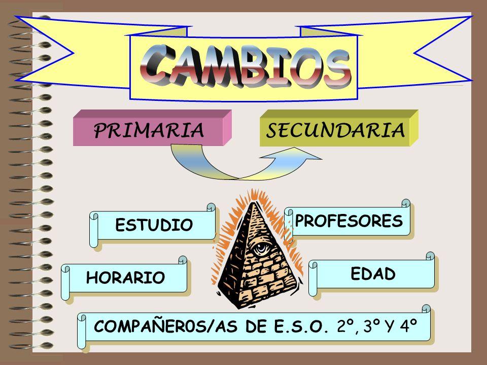 CAMBIOS PRIMARIASECUNDARIA ESTUDIO ESTUDIO COMPAÑEROS/AS DE E.S.O. 2º, 3º Y 4º COMPAÑEROS/AS DE E.S.O. 2º, 3º Y 4º HORARIO HORARIO EDAD EDAD PROFESORE