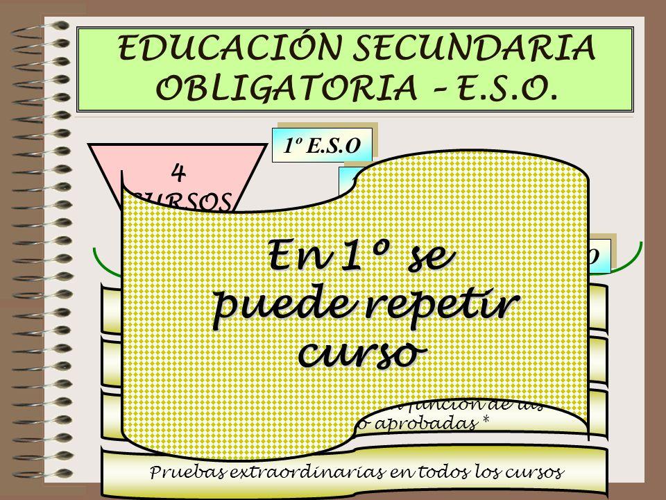4 CURSOS EDUCACIÓN SECUNDARIA OBLIGATORIA – E.S.O.