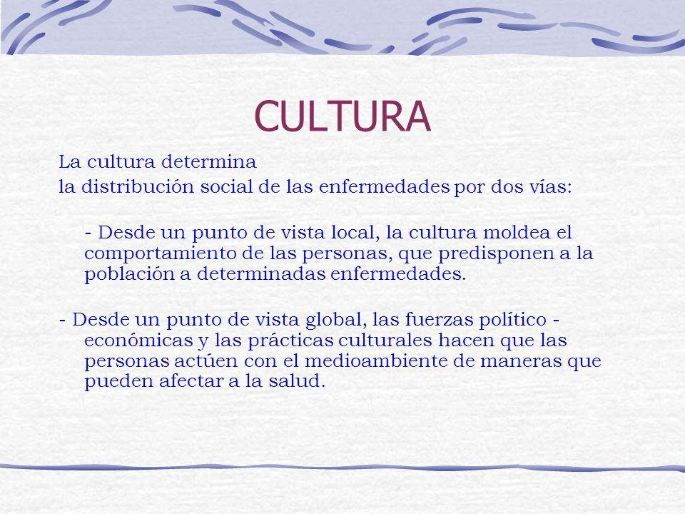 CULTURA La cultura determina la distribución social de las enfermedades por dos vías: - Desde un punto de vista local, la cultura moldea el comportami