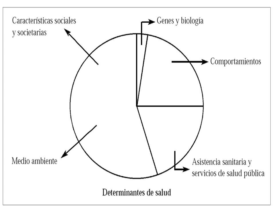JAKARTA EMPODERAMIENTO LA PAZ SEGURIDAD SOCIAL EDUCACIÓN VIVIENDA INGRESO/EMPLEO NUTRICIÓN