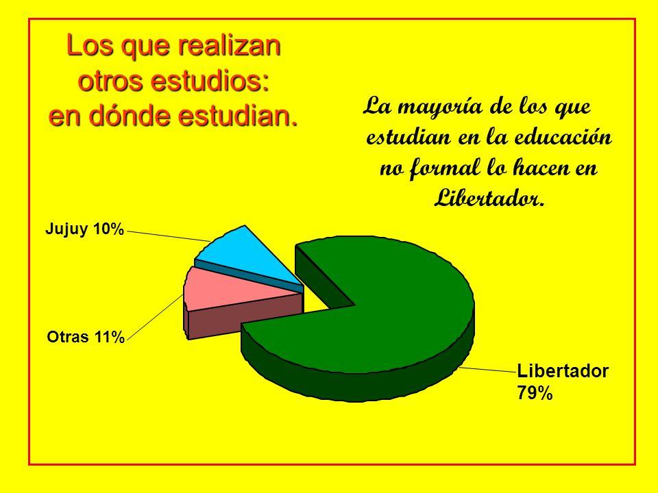 Los que realizan otros estudios: en dónde estudian. La mayoría de los que estudian en la educación no formal lo hacen en Libertador. Libertador 79% Ju