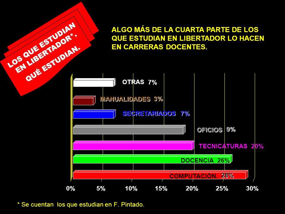 * Se cuentan los que estudian en F. Pintado. LOS QUE ESTUDIAN EN LIBERTADOR*. QUÉ ESTUDIAN. 0%5%10%15%20%25%30% 20%TECNICATURAS 9%OFICIOS 7%SECRETARIA