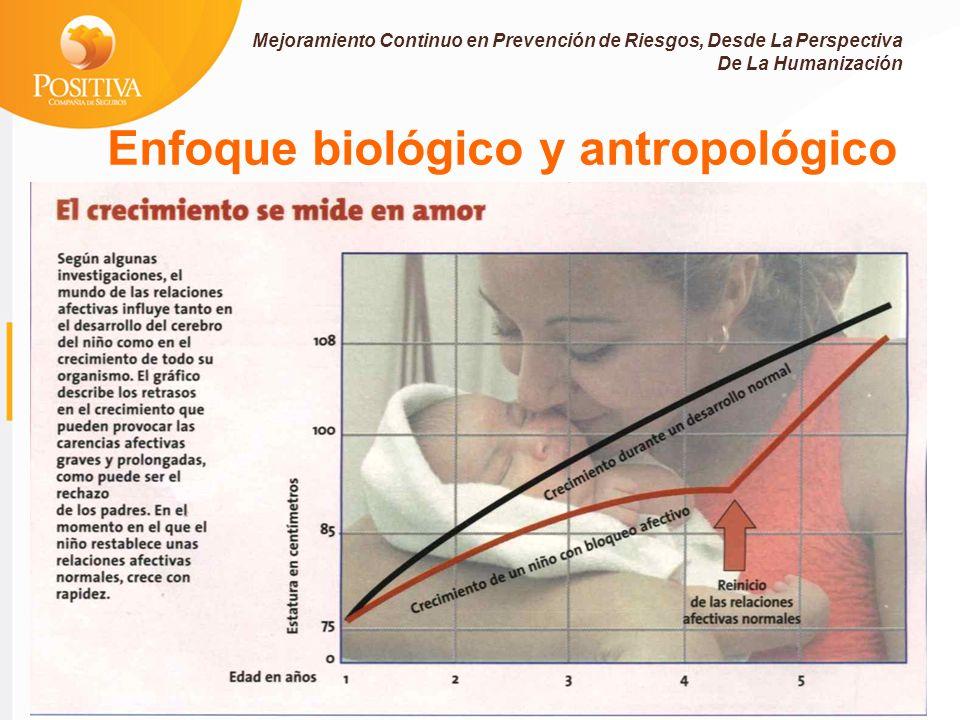 Enfoque biológico y antropológico Mejoramiento Continuo en Prevención de Riesgos, Desde La Perspectiva De La Humanización