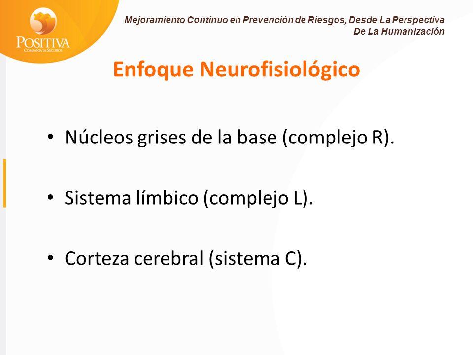 Enfoque Neurofisiológico Núcleos grises de la base (complejo R).