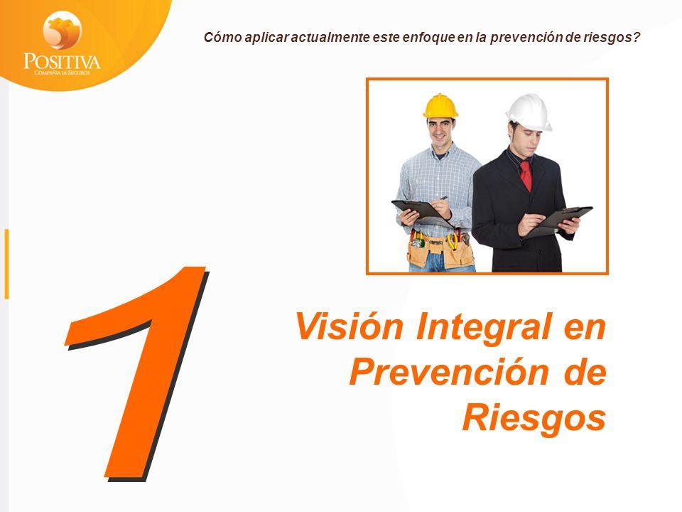 Visión Integral en Prevención de Riesgos Cómo aplicar actualmente este enfoque en la prevención de riesgos?