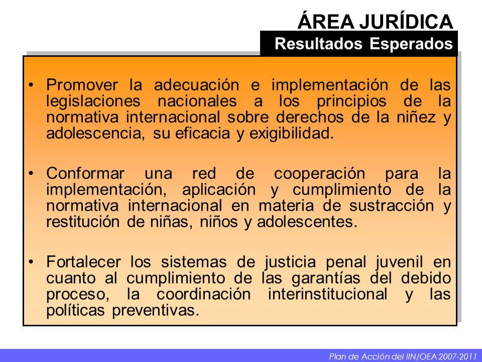 Promover la adecuación e implementación de las legislaciones nacionales a los principios de la normativa internacional sobre derechos de la niñez y ad