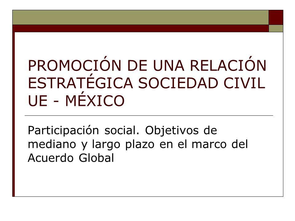 PROMOCIÓN DE UNA RELACIÓN ESTRATÉGICA SOCIEDAD CIVIL UE - MÉXICO Participación social.