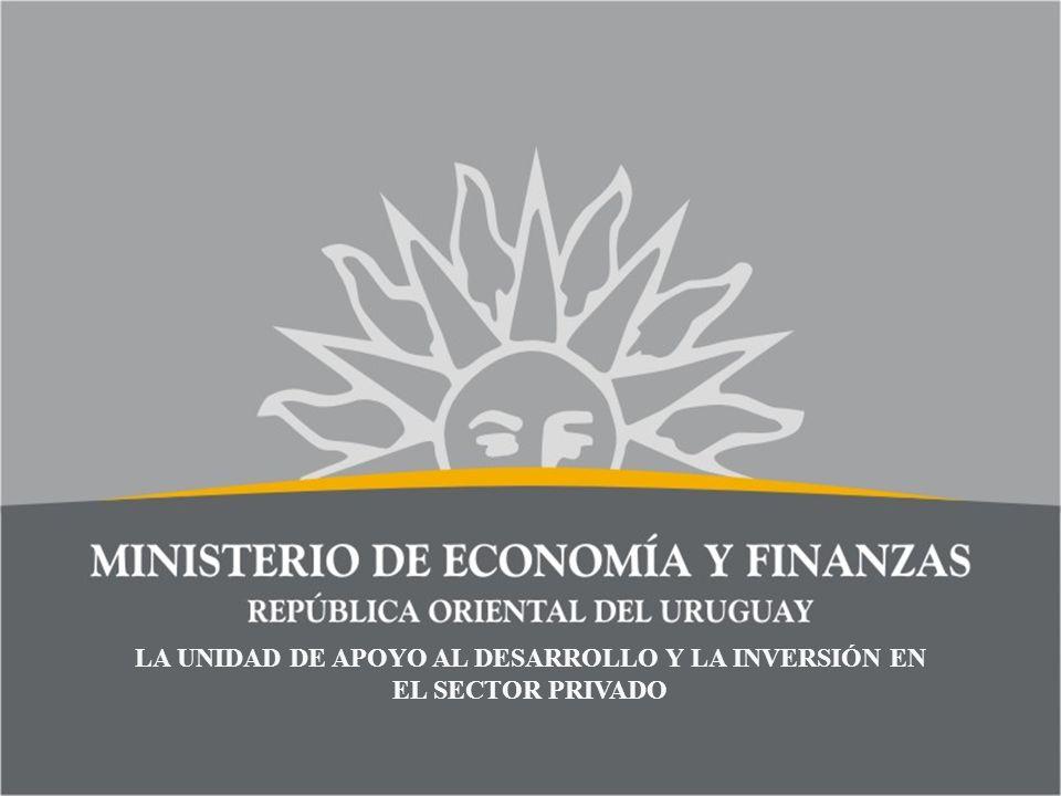 LA UNIDAD DE APOYO AL DESARROLLO Y LA INVERSIÓN EN EL SECTOR PRIVADO
