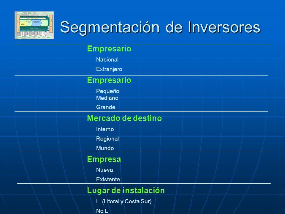 DESARROLLO SECTOR PRIVADO Segmentación de Inversores Empresario Nacional Extranjero Empresario Pequeño Mediano Grande Mercado de destino Interno Regio