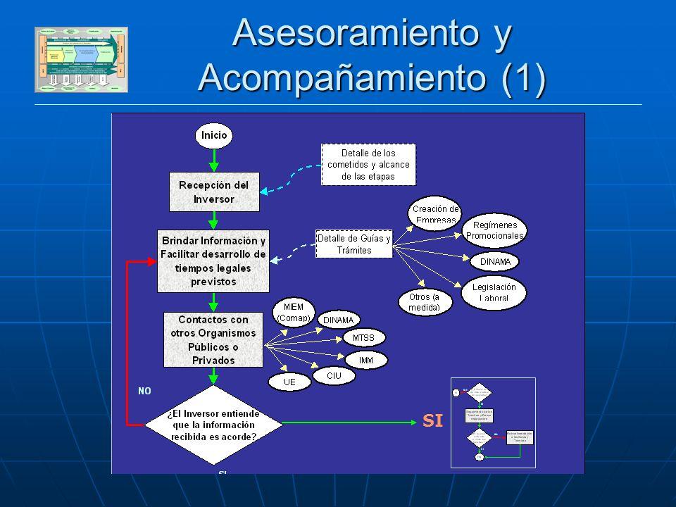 DESARROLLO SECTOR PRIVADO Asesoramiento y Acompañamiento (1) SI