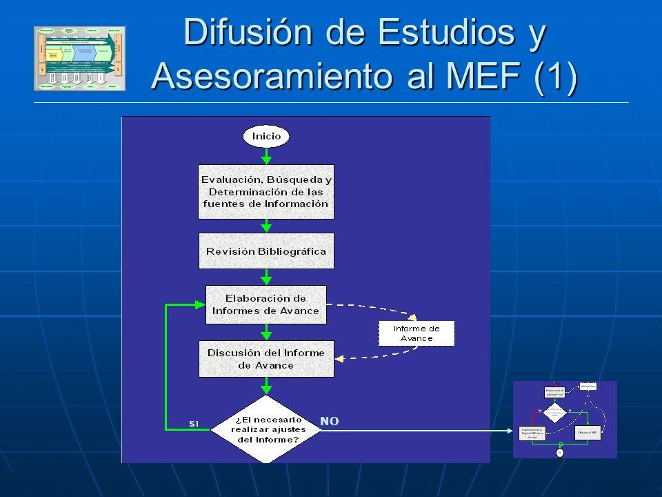 DESARROLLO SECTOR PRIVADO Difusión de Estudios y Asesoramiento al MEF (1) NO
