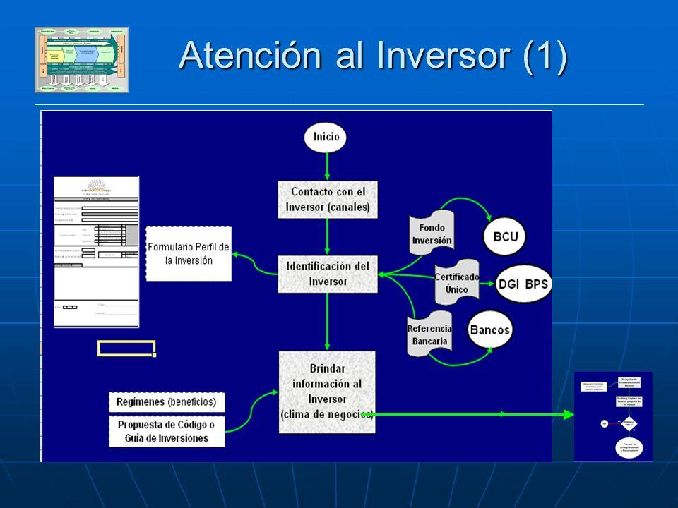 DESARROLLO SECTOR PRIVADO Atención al Inversor (1)