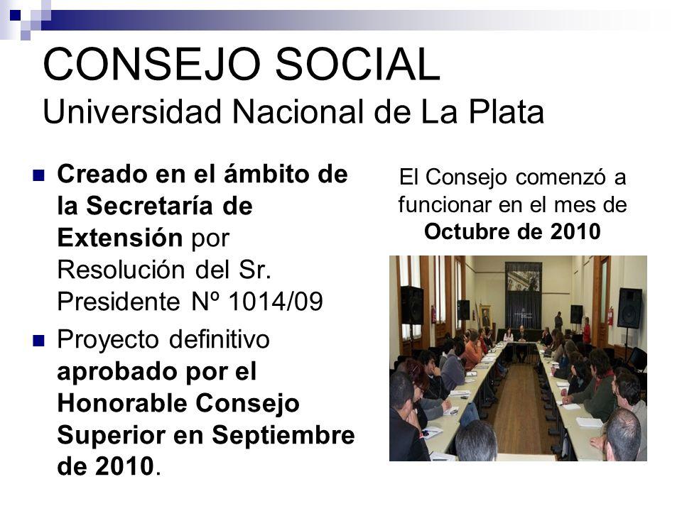 CONSEJO SOCIAL Universidad Nacional de La Plata Creado en el ámbito de la Secretaría de Extensión por Resolución del Sr.