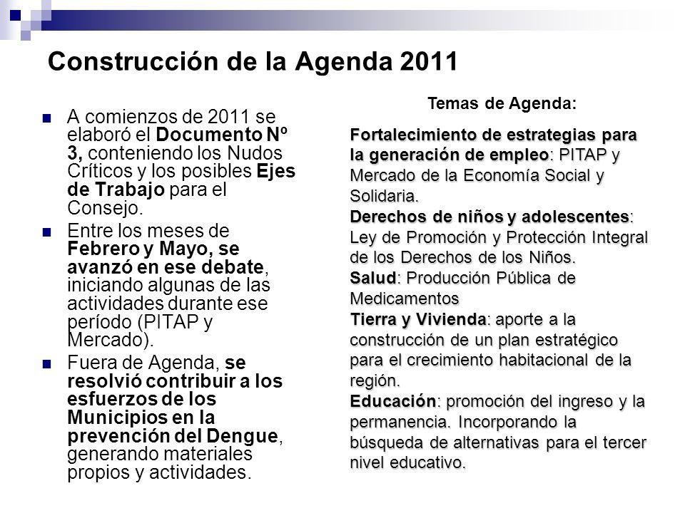 Construcción de la Agenda 2011 A comienzos de 2011 se elaboró el Documento Nº 3, conteniendo los Nudos Críticos y los posibles Ejes de Trabajo para el Consejo.