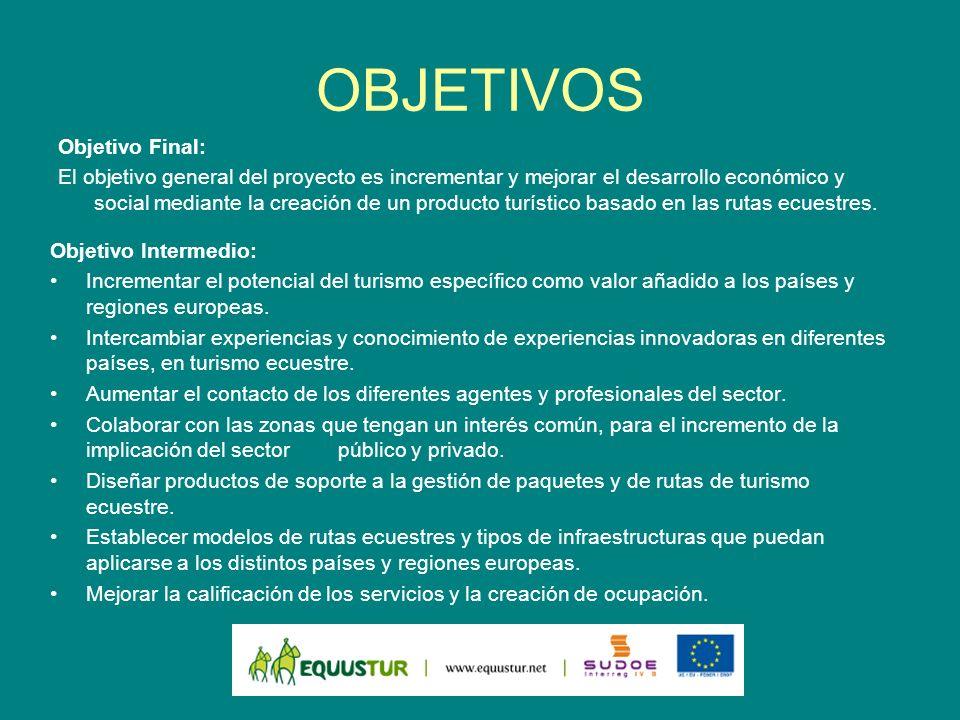 TAREAS Grupos de Tareas: GT 1.Coordinación y gestión del proyecto.