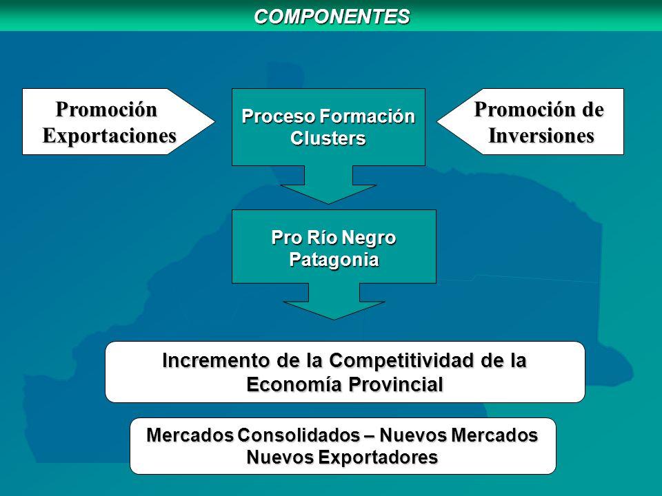 COMPONENTES Mercados Consolidados – Nuevos Mercados Nuevos Exportadores Incremento de la Competitividad de la Economía Provincial Proceso Formación Clusters Pro Río Negro Patagonia Promoción Exportaciones Exportaciones Promoción de Inversiones