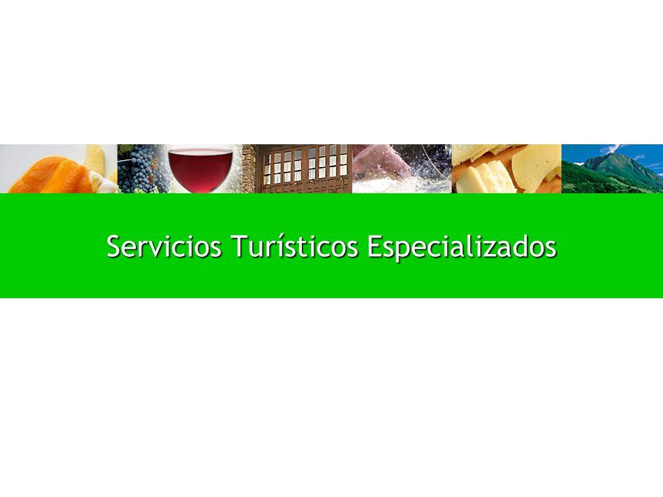 Servicios Turísticos Especializados