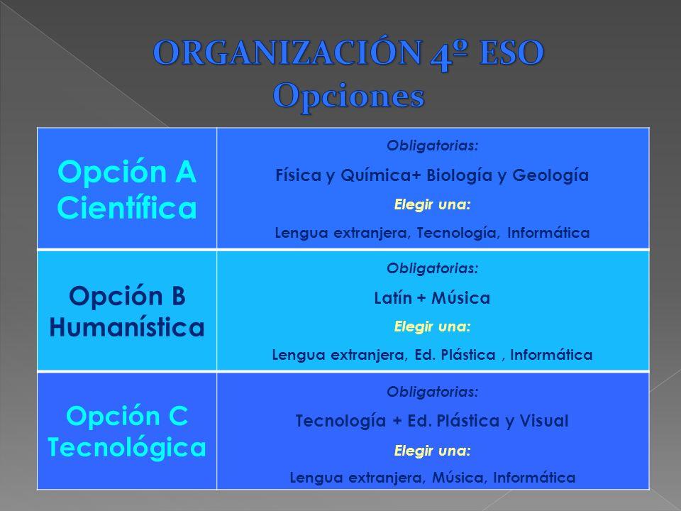 AsignaturasHoras semanales Ciencias Sociales 3 Educación Ético –Cívica 1 Educación Física 2 Lengua Castellana 4 Matemáticas 4 Lengua Extranjera 3 Ense