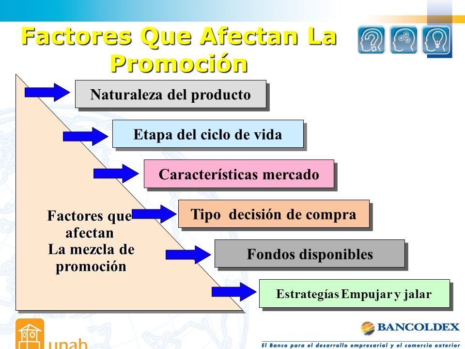 Factores Que Afectan La Promoción Naturaleza del producto Etapa del ciclo de vida Características mercado Tipo decisión de compra Fondos disponibles E