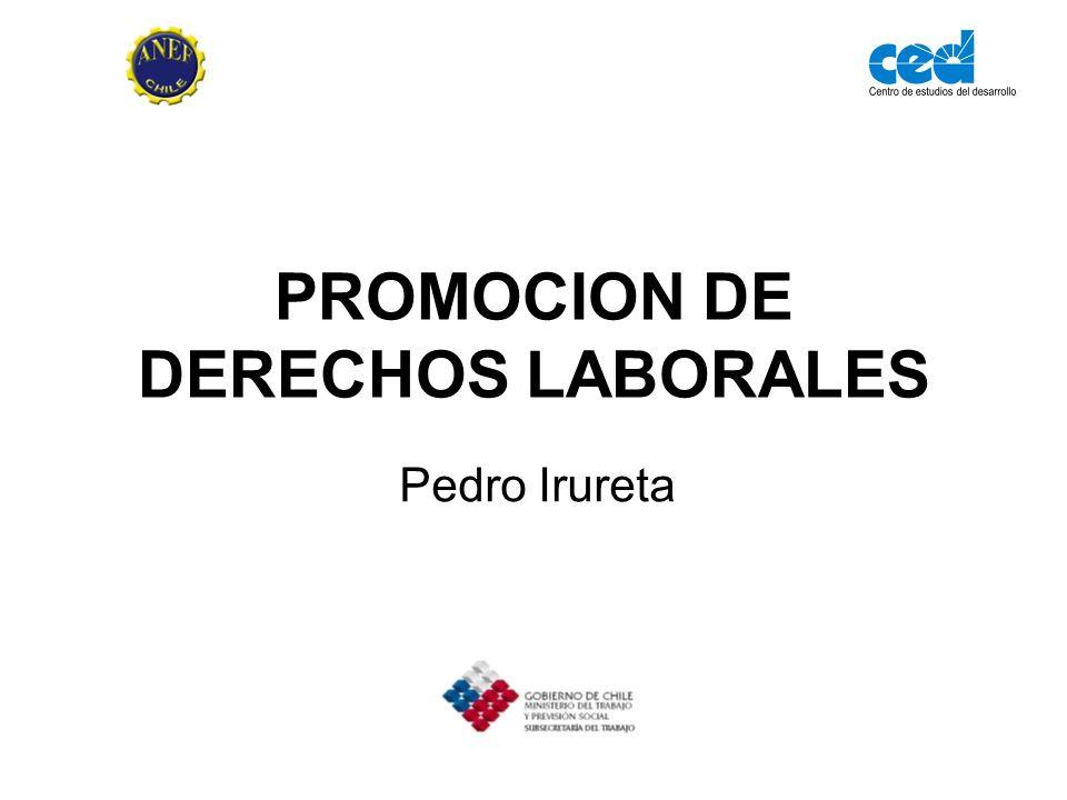 PROMOCION DE DERECHOS LABORALES Pedro Irureta