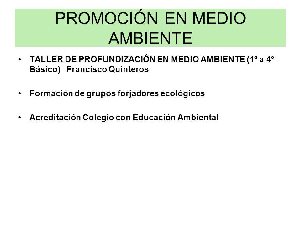 PROMOCIÓN EN MEDIO AMBIENTE TALLER DE PROFUNDIZACIÓN EN MEDIO AMBIENTE (1º a 4º Básico) Francisco Quinteros Formación de grupos forjadores ecológicos