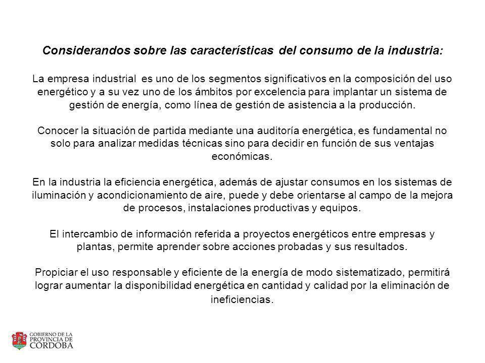 Considerandos sobre las características del consumo de la industria: La empresa industrial es uno de los segmentos significativos en la composición de