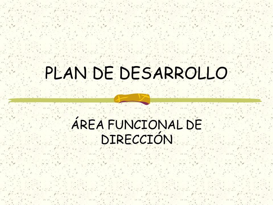 PLAN DE DESARROLLO ÁREA FUNCIONAL DE DIRECCIÓN