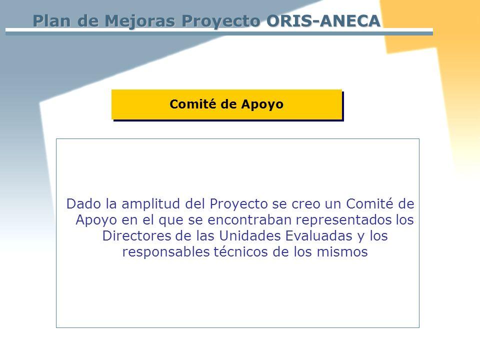 Plan de Mejoras Proyecto ORIS-ANECA Dado la amplitud del Proyecto se creo un Comité de Apoyo en el que se encontraban representados los Directores de las Unidades Evaluadas y los responsables técnicos de los mismos Comité de Apoyo